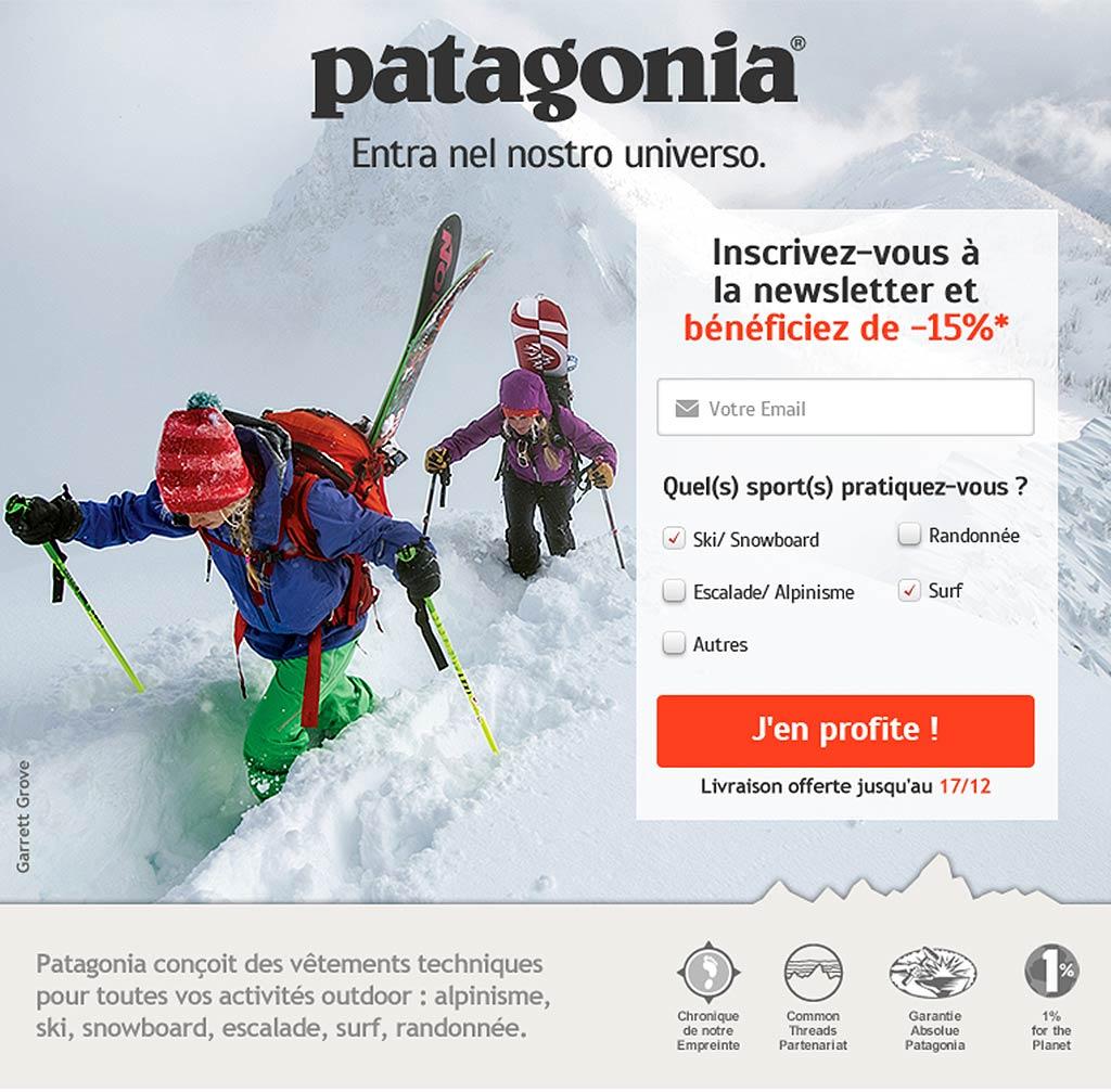 Patagonia Landing Page